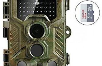 Choisir une caméra de chasse infrarouge