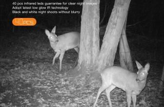 Choisir une caméra de chasse nocturne